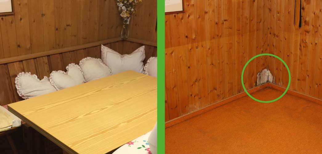 schimmelsuchhund bayern kundenreferenzen. Black Bedroom Furniture Sets. Home Design Ideas